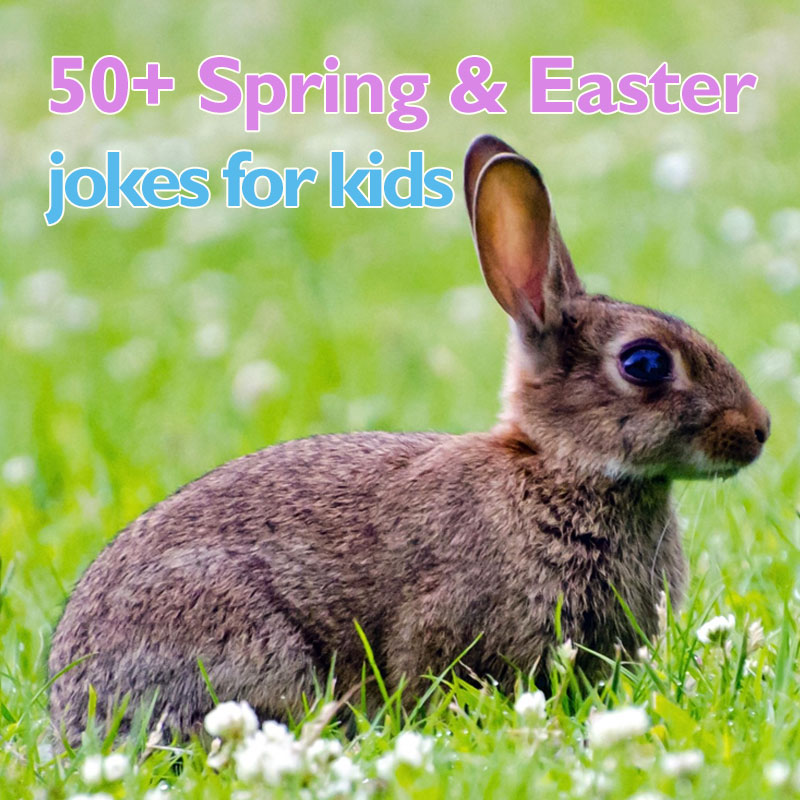 50+ Spring and Easter Jokes for Kids