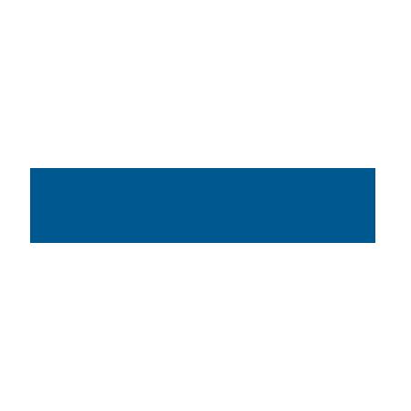 CSE Civil Service Employees logo